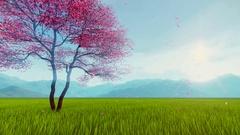 Spring scenery with bloomy sakura cherry tree slow-motion 4K Stock Footage