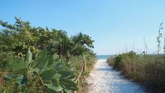 BEACH_FLORIDA GULF_SANDY PATH TO BEACH Stock Footage