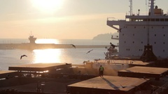 Loading and unloading at seaport Stock Footage