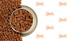 Dog bowl with pet feed on the half white background and scattered dry food Stock Photos