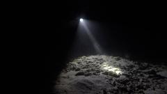 Night snorkeling on the Maldives Stock Footage