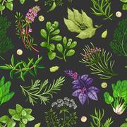Vector green pattern with herbs on dark Stock Illustration