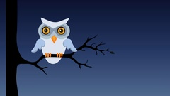 Owl sitting on tree branch at night. Retro cartoon style with flat design. Stock Footage