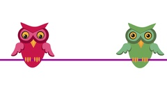 Two owls flirting. Retro cartoon style with flat design. Stock Footage