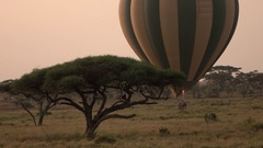 CLOSE UP: Hot air balloon safari floating close above the ground taking off Stock Footage