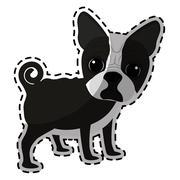 Dog breed icon image Stock Illustration