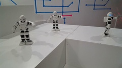 Humanoid robots perform synchronized dance moves on the robotics exhibition Stock Footage