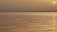Sea Wave On The Sunset Stock Footage
