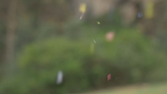 Confetti Against Blurred Outdoors Background Stock Footage