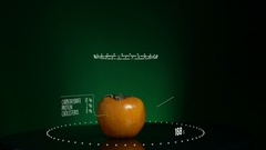 Infographic of Persimmon with vitamins, microelements minerals. Energy Stock Footage