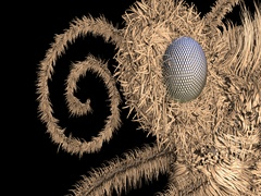 Hairy insect head, compound eye, proboscis Stock Footage