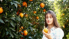Young woman picking oranges in the garden Stock Footage