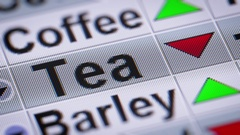 Tea index of the stock market. Down. Looping. Stock Footage