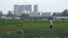 Lonely farmer and expanding Shenzhen city, urbanization in China Stock Footage