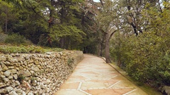 The sandy track near an olive grove Stock Footage