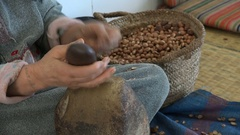 Closeup of woman cracking argan nuts in traditional workshop Morocco Stock Footage
