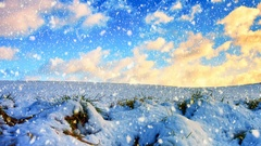 Winter landscape with white country field and falling snow. Nature background Stock Footage