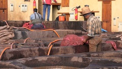 Workers in tannery Fez Morocco Stock Footage