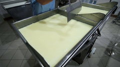Production of Cheese with Mold . Kneaded Curd. Stock Footage