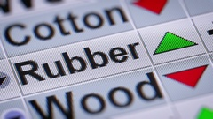 Rubber index of the stock market. Up. Looping. Stock Footage