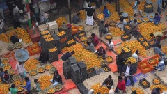 Busy wholesale fruit and vegetable market in Kolkata, India commerce trade Stock Footage