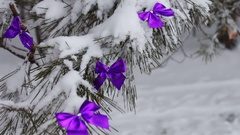 Decorated snowy forest with tree lilac ribbons Stock Footage