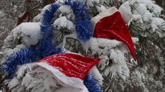Christmas snow-covered branches in a forest where there are caps of Santa Claus Stock Footage