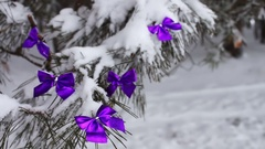 Decorated snowy forest tree with lilac ribbons Stock Footage