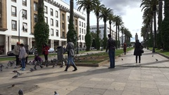 Families feed pigeons in a beautiful park in Rabat, Morocco Stock Footage