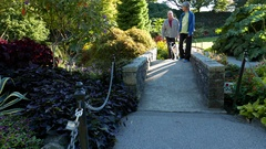 People sightseeing and walking with dog at Queen Elizabeth Park Stock Footage