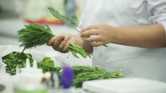 Cook in a white apron, choose a good dill and gathers in her hand Stock Footage