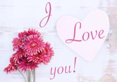 Red gerbera and wooden heart with words I Love You Stock Photos