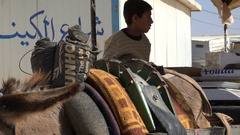 Closeup of donkey cart, food distribution in Syrian refugee camp Jordan Stock Footage