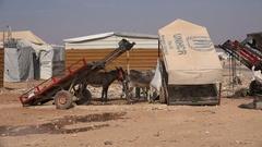 Donkeys inside the Zaatari refugee camp for displaced Syrians in Jordan Stock Footage