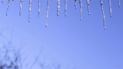 Icicle dripping closeup Stock Footage