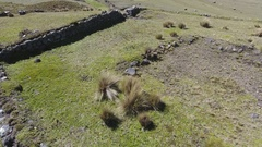 Flying over the El Salitre Archaeological Site Stock Footage