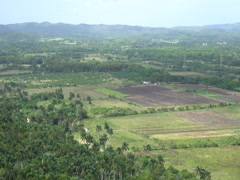 Panoramic view of the tropical valley with fields and hills at summer sun Stock Footage