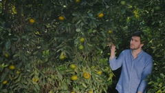 Beautiful woman and handsome man meeting near the citrus trees in the garden Stock Footage