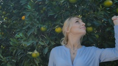 Young woman enjoy the smell of green oranges near a green tree Stock Footage