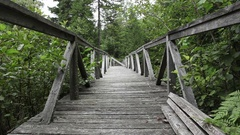 Wood Bridge In The Forest Stock Footage