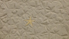 Approximation of starfish lying on the sand and her imprints Stock Footage