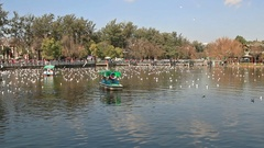 Panoramic view of Green Lake Park in Kunming Stock Footage