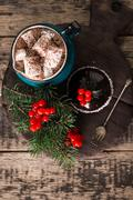 Winter hot drink, cacao with marshmallows and french mousse cake Stock Photos