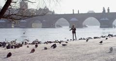 Slow motion feeding birds Charles bridge over Vltava river in capital of Czechia Stock Footage