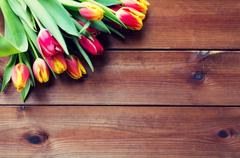 Close up of tulip flowers on wooden table Stock Photos