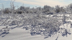 Beautiful snow-covered land Stock Footage