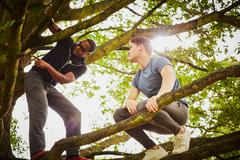 Man with personal trainer instructing how to climb tree in park Stock Photos