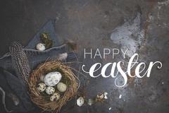 Oster Dekoration mit Nest und Ei auf dunklem Hintergrund Stock Photos