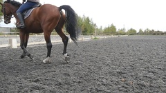 Following to foot of horse running on the sand.  Slow motion Stock Footage