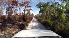 4x4 vehicle driving through burned landscape on Fraser Island Stock Footage